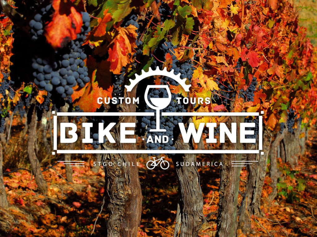 BIKE AND WINE